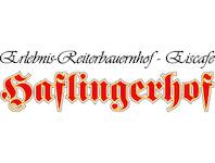 Haflingerhof Fam. Vögele, 6233 Kramsach